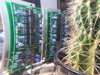 Kaktus MethAmp.jpg