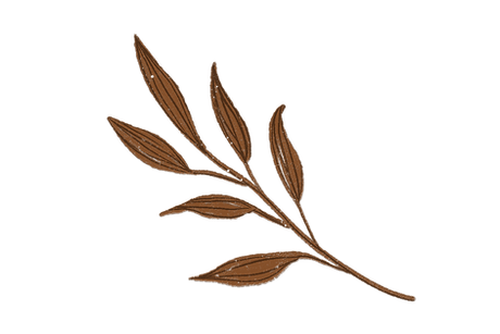 leafBranch.png