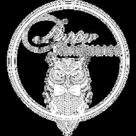 Dapper_Logo_White_Png.png