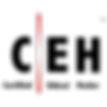 CEH-logo-sq-300x300.png