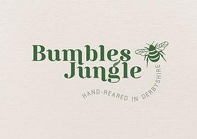The Brand New Studio Bumbles Jungle Logo