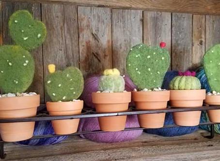 Needle Felt Cacti via Zoom!