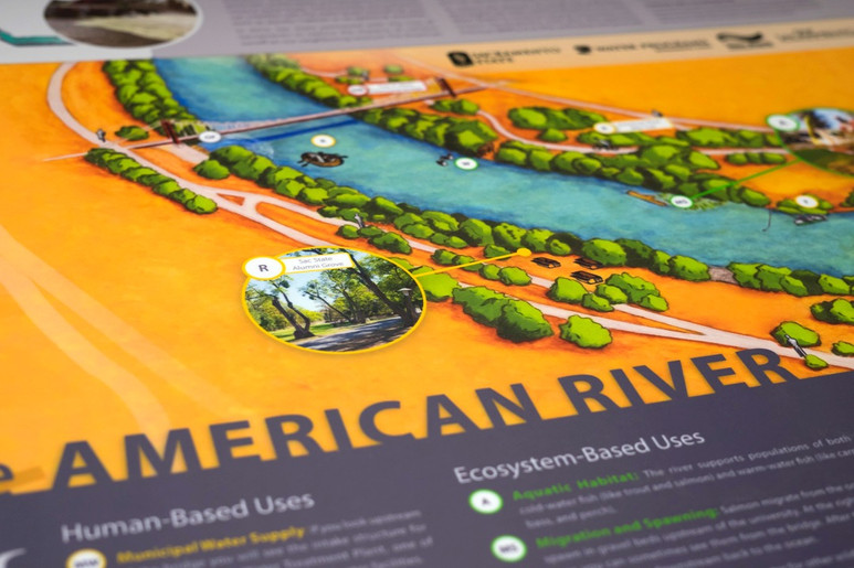 Protecting the American River