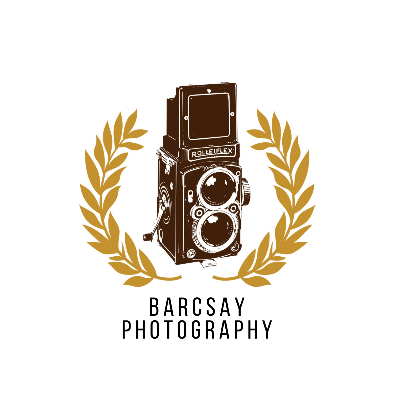 Copy of Barcsay photography