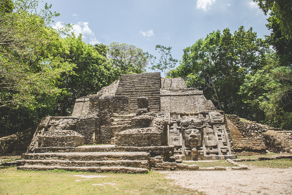 Adventure, Travel, Belize. Lizard, Monkey, Spider Monkey, coatimundi, Escape, South America, America, Mayan, Mayan Ruins, Maya