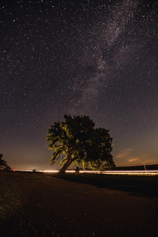 Stars, milky way, lights, Kansas, Tall Grass National Preserve, Bison, Flat, Prarie