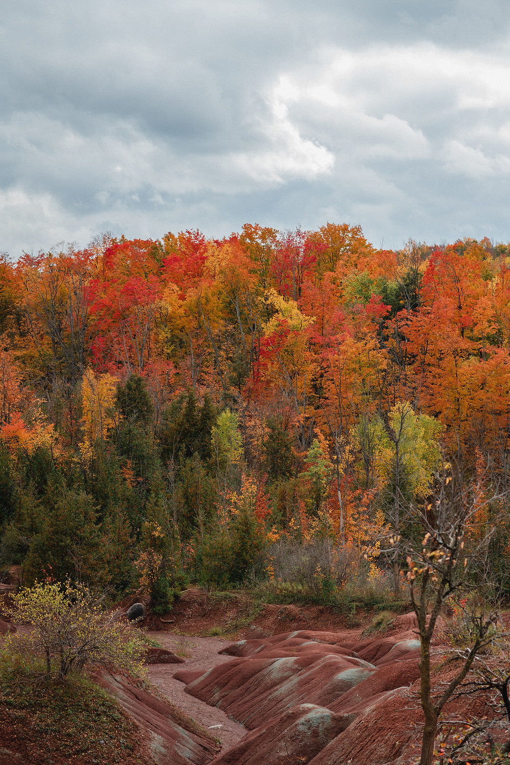 badlands, red rock, ontario, canada, fall, fall colors, rocks, desolate, landscape photographer