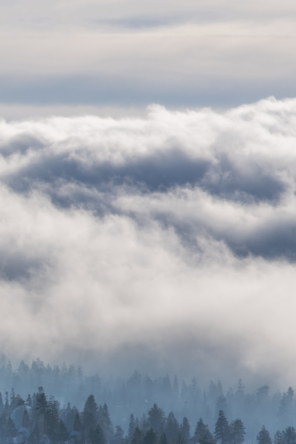 Lake Arrowhead, Fog, Trees, Clouds, California