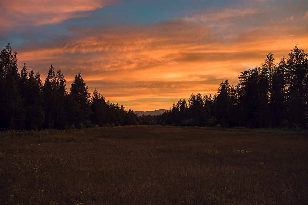 lake tahoe, flower, field, mountain, sun, moon, stars, lightening, nature, wilderness, fun, sun, stars, night photography, trees, California, landscape, sunrise, sunset, Nevada, clouds, America, Fireworks, Forth of July