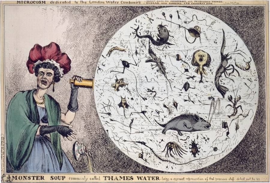 Cartoon depicting what one could find in a drop of London water.