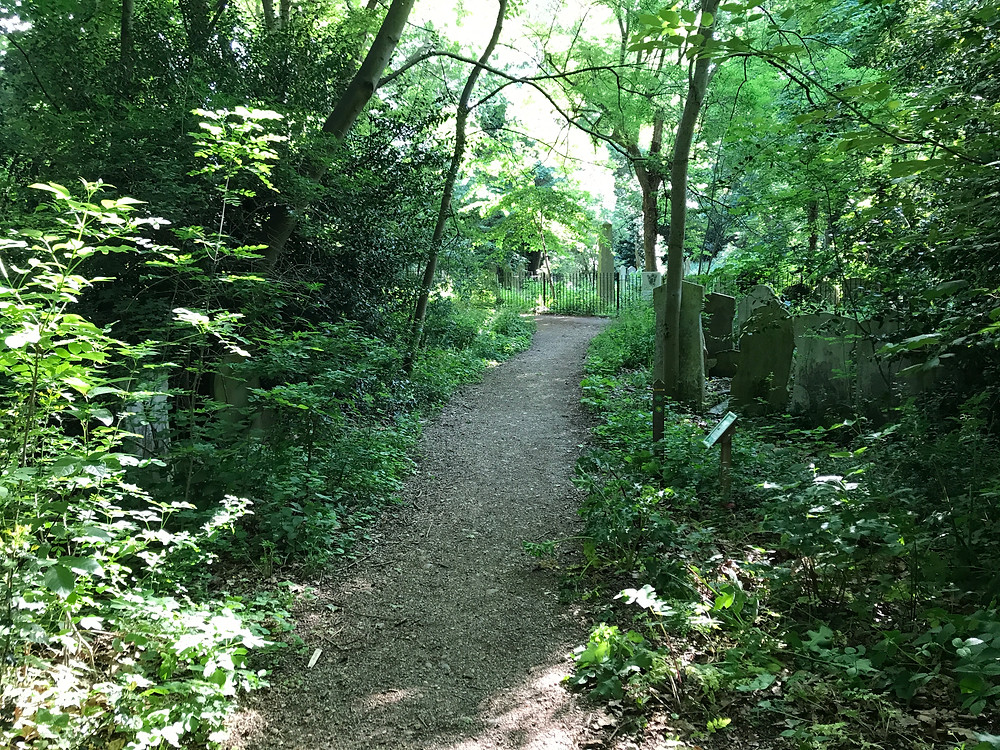 A path wends its way through plot square 50.  But where is Martha Babbage?
