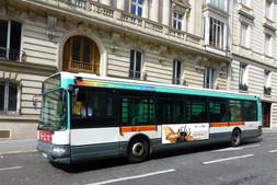 Flan de bus Deyrolle