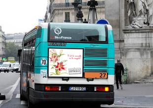 Cul de bus Deyrolle