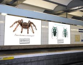 Affichage 4x3 métro Deyrolle