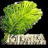 Kidaka500x500_edited.png