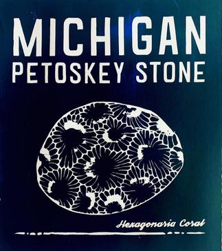 Petoskey Stone