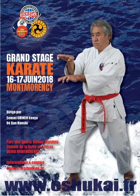 Grand Stage Karate à Montmorency