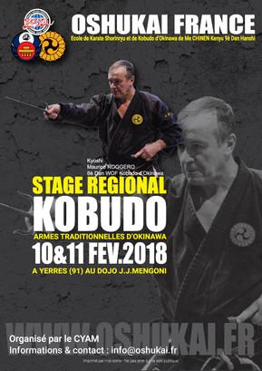 Stage régional de Kobudo à Yerres