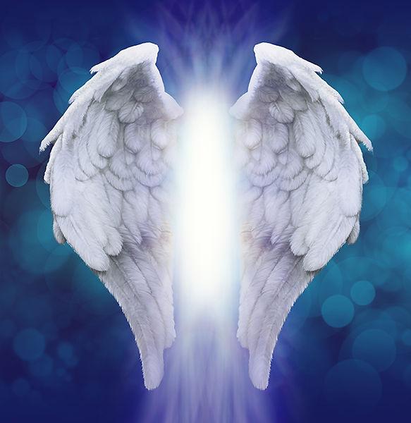 angel-wings-small-1.jpg