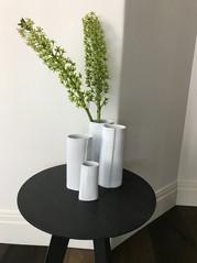Crocodile Imprint Vases