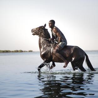 Le Delta du Saloum - Quitter l'eau