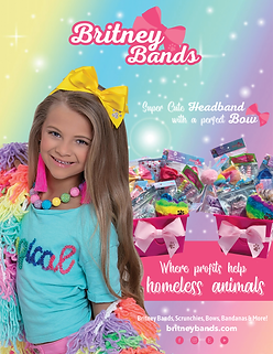 Britney Bands Ad (1).png