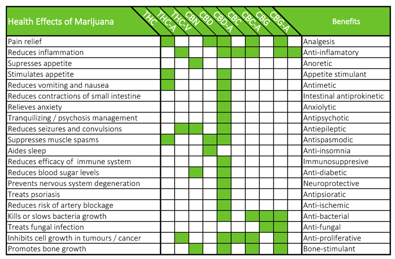 """The cannabis plant contains a specific group of properties called Cannabinoids"""". Each of these phytocannabinoids have amazing health benefits!"""