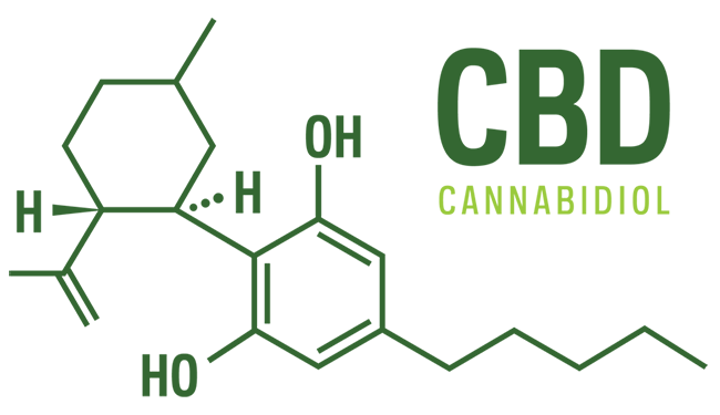 CBD is found in many varieties of the cannabis plant.