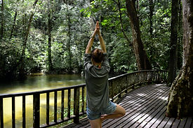 Yoga in the Jungle in Borneo