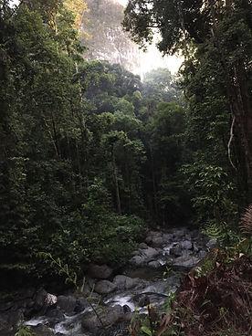 Malaysia world heritage park tour