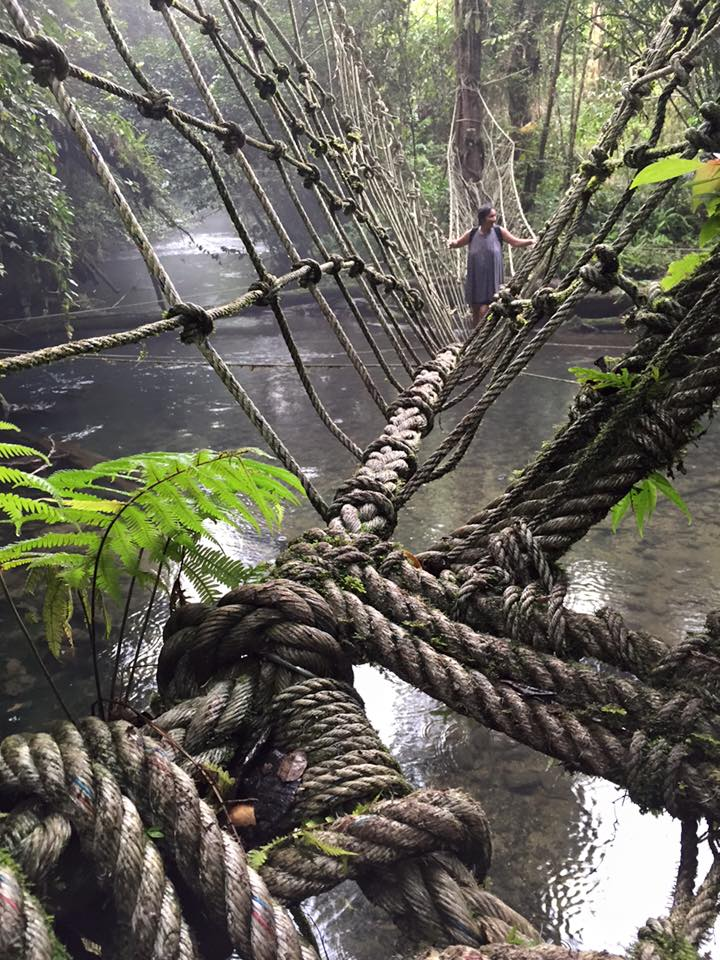 Monkey Bridge Crossing, Headhunters Trail