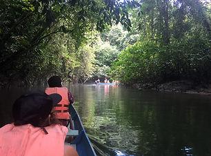 Design your own Borneo adventure tour