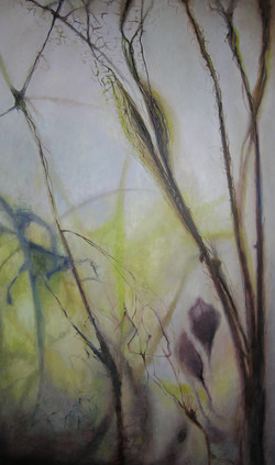 Plantenleven 200 x 120
