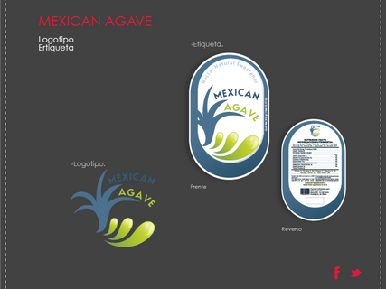 AR-WIX-PORTAFOLIO-MEXICAN AGAVE.png
