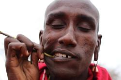 Maasai chewstick toothbrush