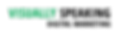 Vis Speak Black Logo.png