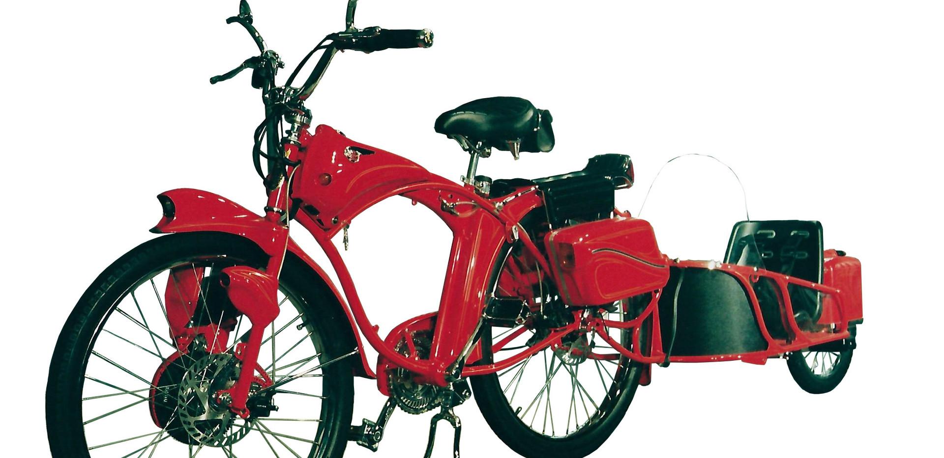 bike and trailer R2.jpg