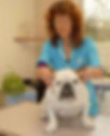 ostéopathie pour bouledogue