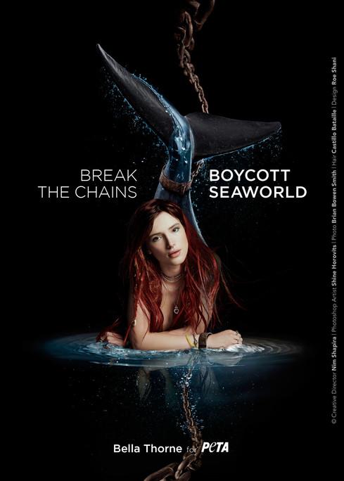BREAK THE CHAINS - BOYCOTT SEAWORLD