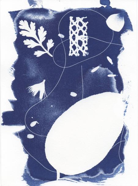 Cyanotype 1
