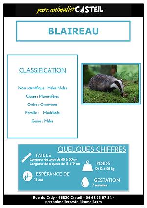 blaireau_Page_1.png