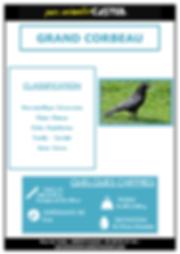 grand corbeau_Page_1.png
