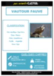 vautour fauve_Page_1.png