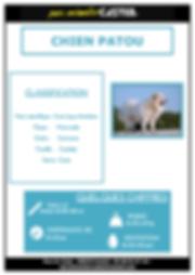 chien patou_Page_1.png