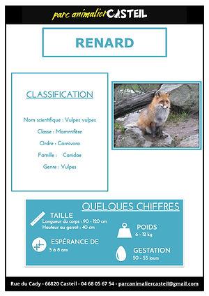 renard1.jpg