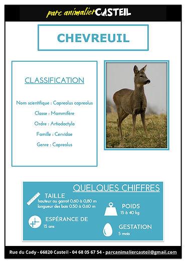 chevreuil1.jpg