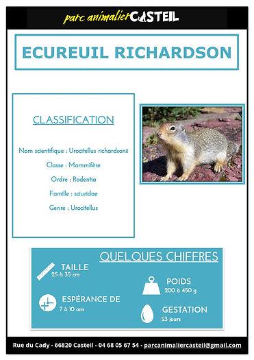 ecureuil richardson1.jpg