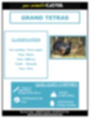 grand tétras_Page_1.png