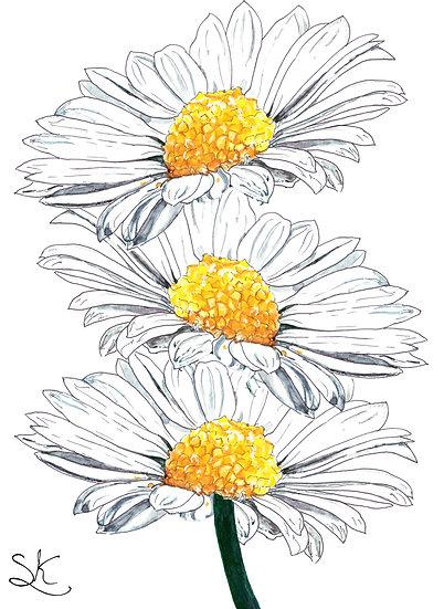 Daisy Chain Card