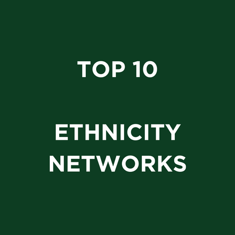 TOP 10 ETHNICITY NETWORKS